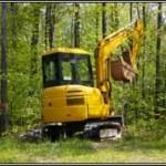 marietta tree clearing